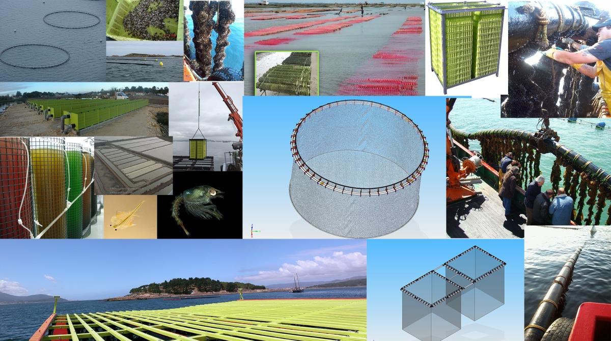 La acuicultura multitrófica integrada (IMTA), definición y perspectivas de futuro.
