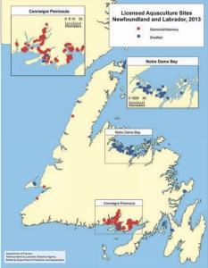 Mapa instalaciones acuicultura en Terranova y Labrador