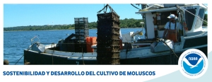 cultivo de moluscos offshore