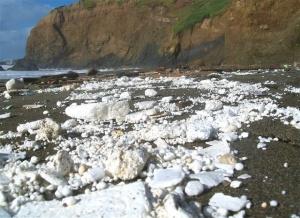 residuos de poliestireno en la costa