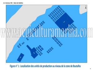 concesiones-acuicultura-marruecos